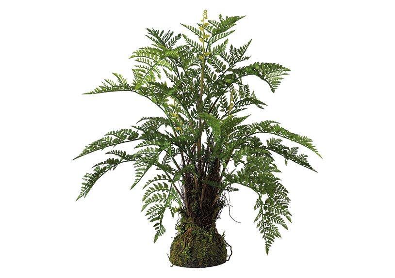 Fern bush on moss bale green, plastic 65x70cm