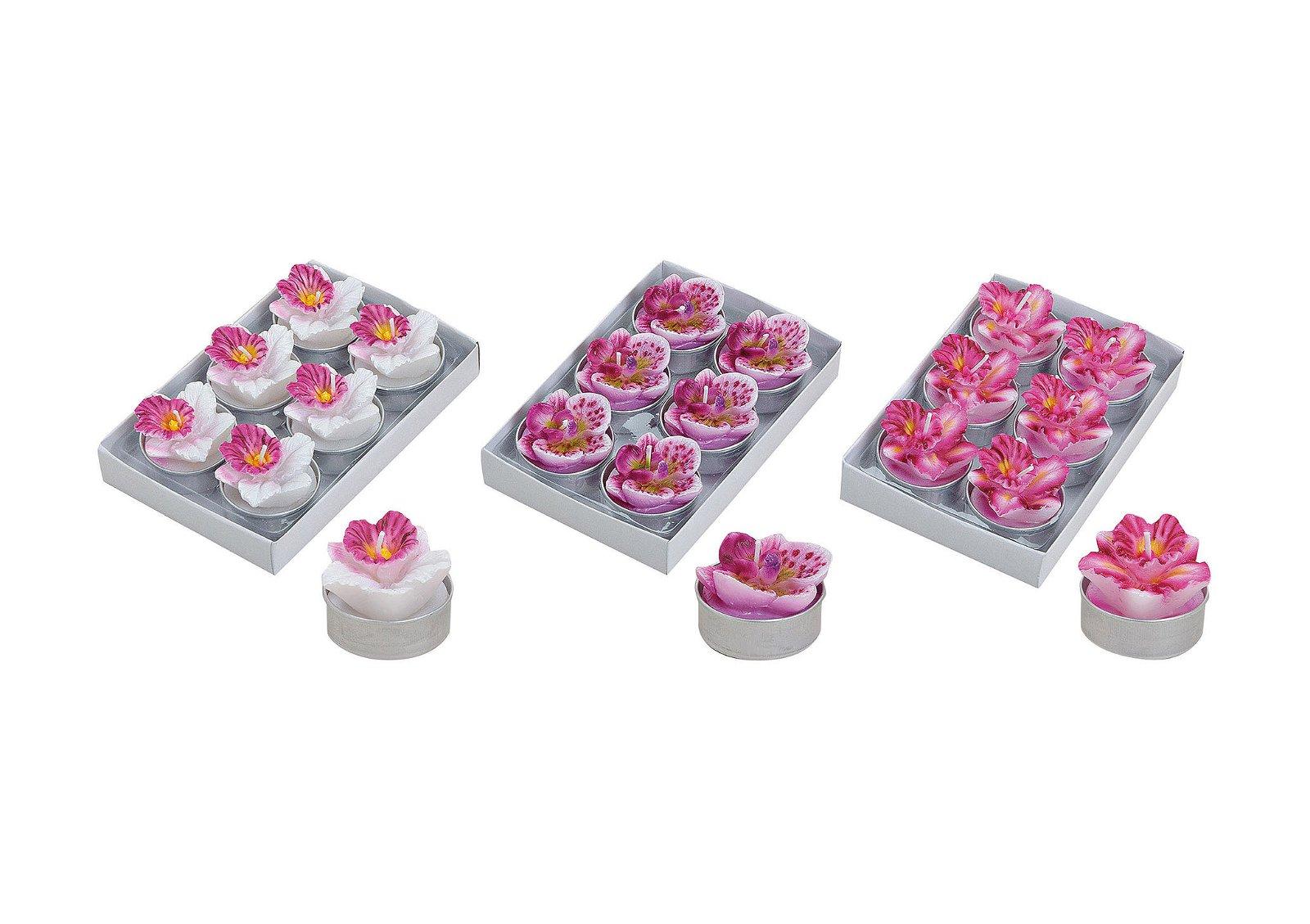 TEALIGHT-SET ORCHID 6 PCS. 3-ASS. 3X4 CM}