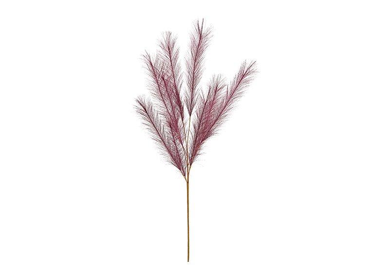 Plastic pampas grass purple (h) 91cm