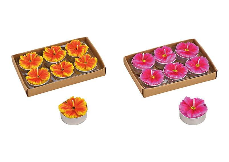 Tealight-Set Flower 4x2x4cm colorful 6 Pcs.  2-Asst. 13x3x9cm