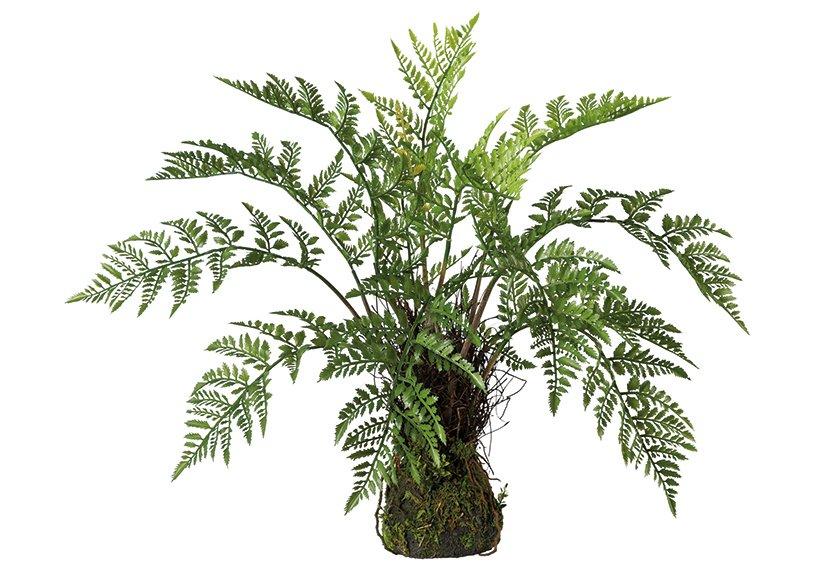 Fern bush on moss bale green, plastic 50x60cm